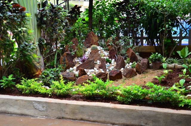 Landscaping near pool garden